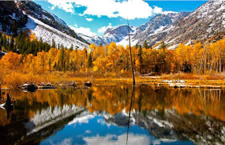 easter sierra fall colors photography workshop 2018 lundy canyon
