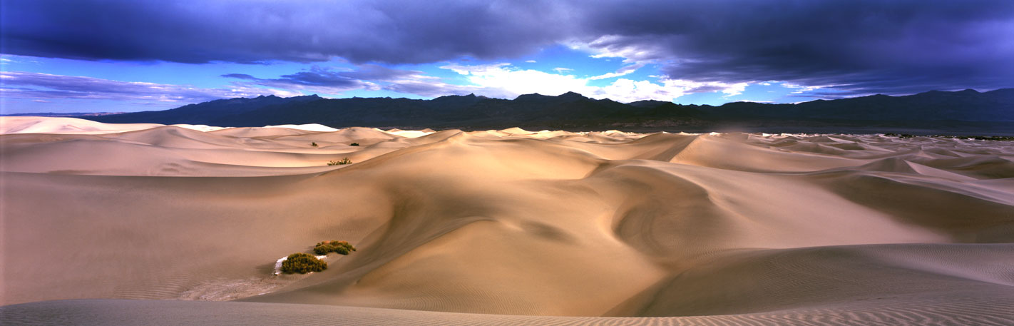 Panoramic Fine Art Landscape Photography ~ After the First Rain, Mesquite Flat Sand Dunes, Death Valley