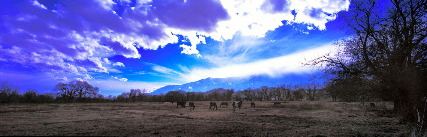 Panoramic Fine Art Photography ~ Panorama Landscape Photo Gallery ~ Horses Under Magical Sky, Lone Pine, Calif.
